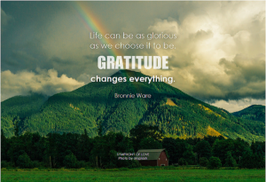 Lakewood Community Acupuncture | Gratitude